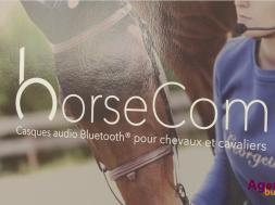 horsecom